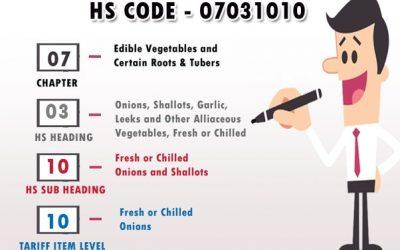 HS Code یا کد بین المللی چیست