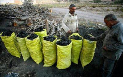 علت قاچاق زغال در شهرستان بهمئی ریشه یابی شود