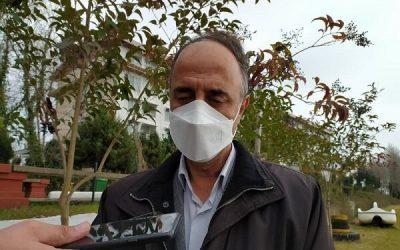 موافقت ایران باترانزیت دام های زنده از جمهوری آذربایجان به نخجوان