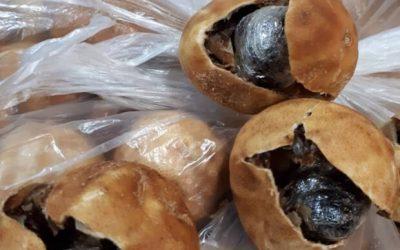 کشف سه کیلوگرم تریاک در لیمو عمانی در فرودگاه امام(ره)