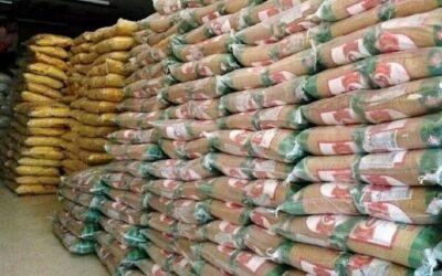 افزایش ۳۴ درصدی واردات برنج/ ۱۲ هزار تن برنج در حال ترخیص است