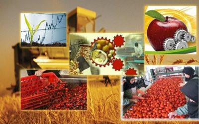 صادرات محصولات کشاورزی رکورد زد/ توزیع ۴.۹ میلیارد دلاری بین ۸ کشور