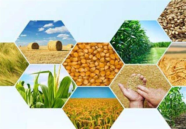 افزایش ۲۶ درصدی صادرات محصولات کشاورزی